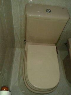 Instalaciones y venta tapa wc dama de roca instaltec for Roca modelo dama
