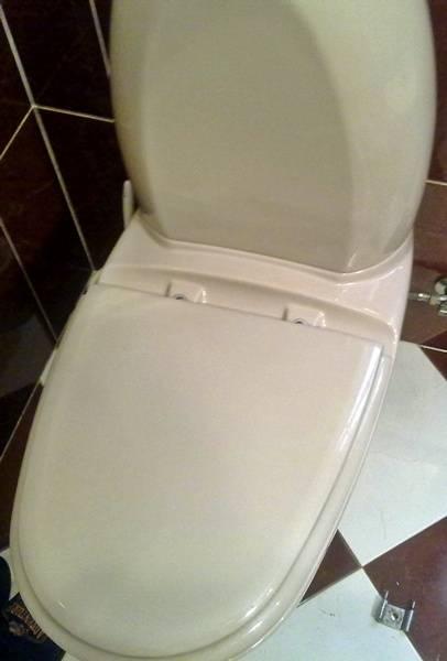 Instalaciones y venta tapa wc aurea de gala instaltec for Sanitarios gala precios