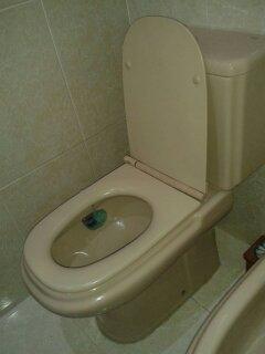 Tapas de wc